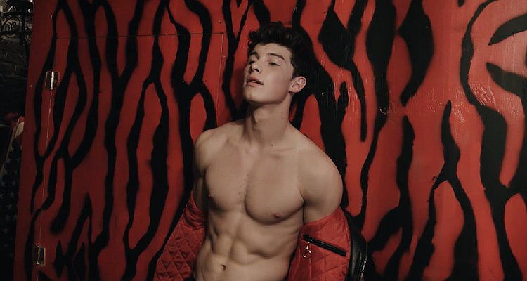 Image result for shawn mendes body
